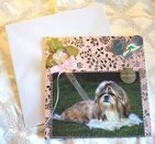 DOG GREETINGS CARD HAND MADE TO ORDER, PERSONLISED, ANY BREED, OCCASION, COLOUR